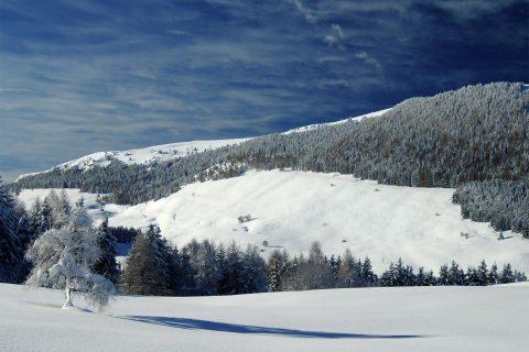 Monte Bondone